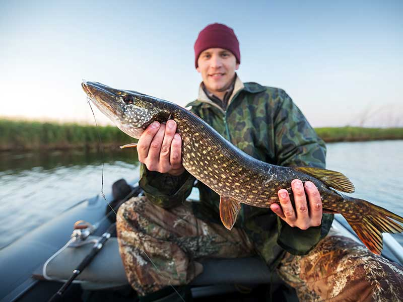 Fiskeri – de tre store områder