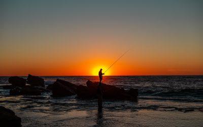 Gode fiskesteder når du flytter til Horsens